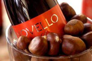 """Cos'é il """"Vino Novello"""""""
