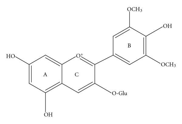 Malvidina-3-glucoside