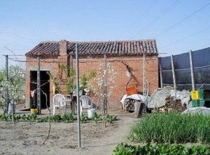 Gli orti di Codevigo e Chioggia