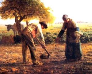 Il calendario rituale contadino