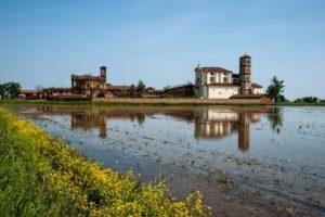 Principato di Lucedio, il primo riso tutto italiano