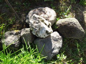 Vulcania 2013: Soave antico e sempre nuovo