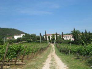 """Il """"Calto delle Fate"""" del Filò delle vigne, Baone (PD)"""